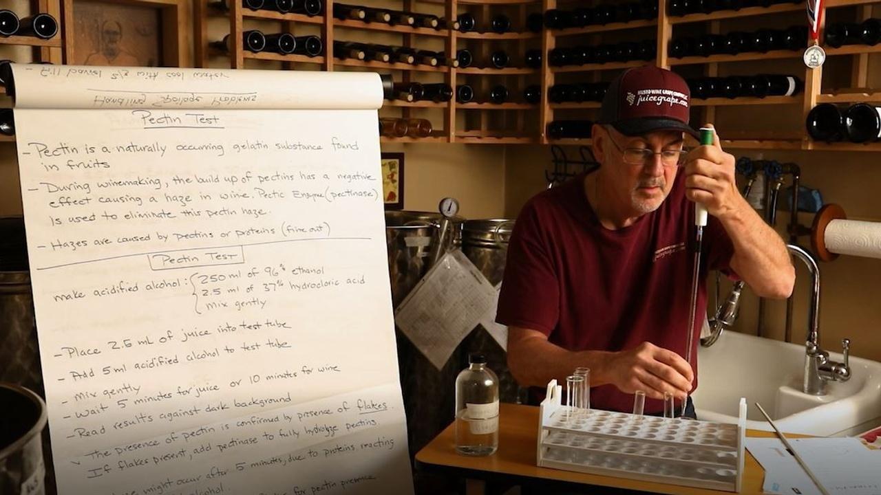 Efcrbpfvrisofd1jenjt testing for pectins wine