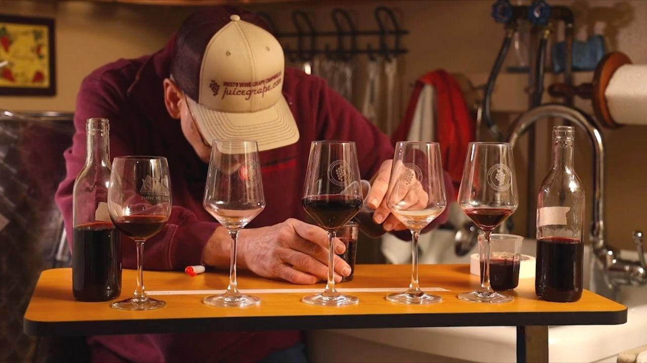 Ybn8bi7jrdmy80ojy2r9 blending wines