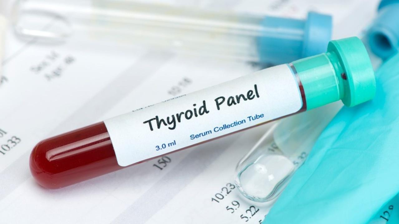 Tivdygu7qvcwh4addus5 thyroid panel
