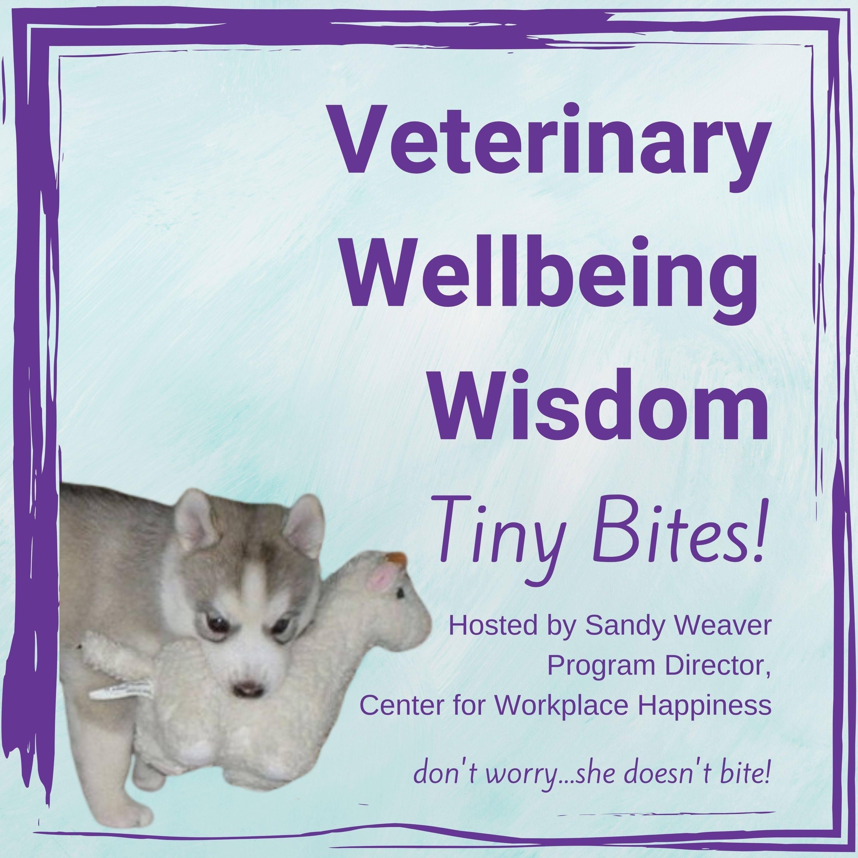 Veterinarian Wellbeing Wisdom Tiny Bites