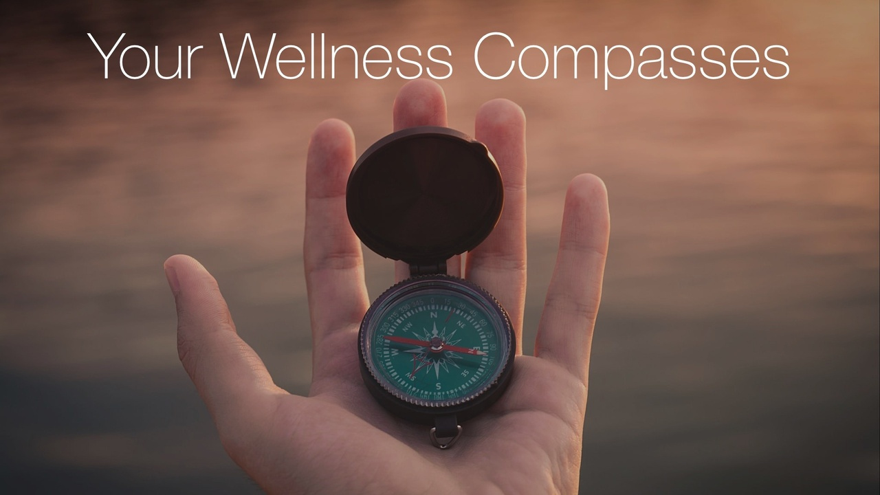 Zdc9da2wqg2riwyr8qqq wellness compass