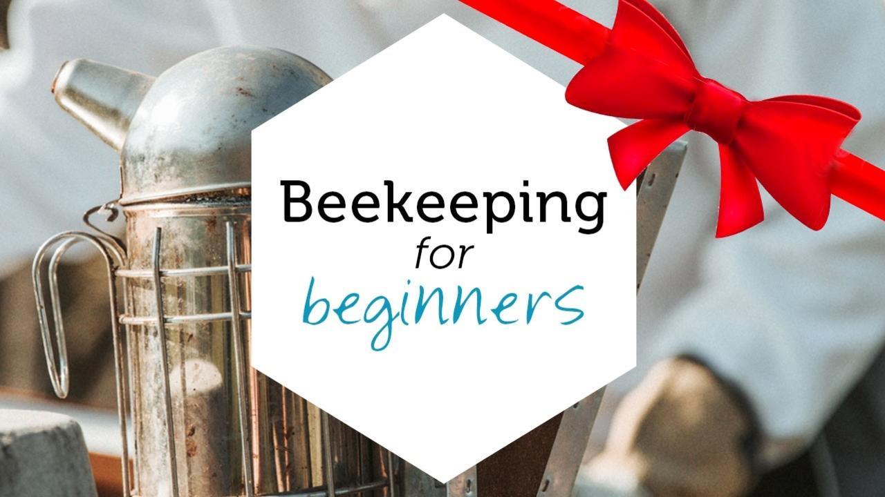 Ruemstkkq46vjs64rxqz beekeepingforbeginners productyimage gift