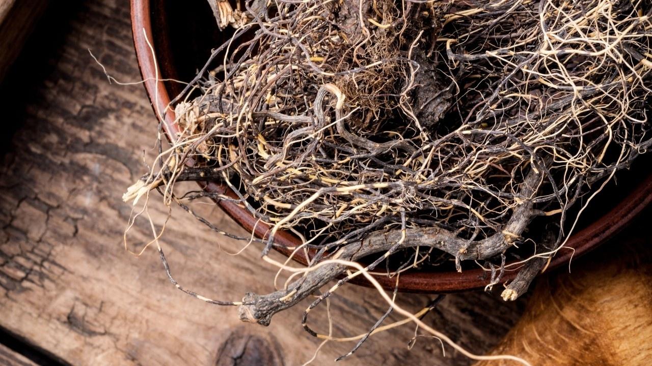 Gatnyo18tiohtls16efg roots