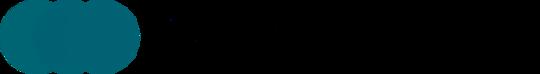 Rjyvfgrutzk9xnysnyky logo high resolution 600