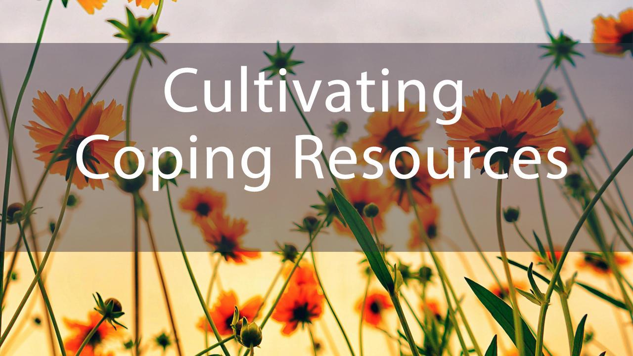 Agaj8btvrfmoraldxotf cultivating coping resources