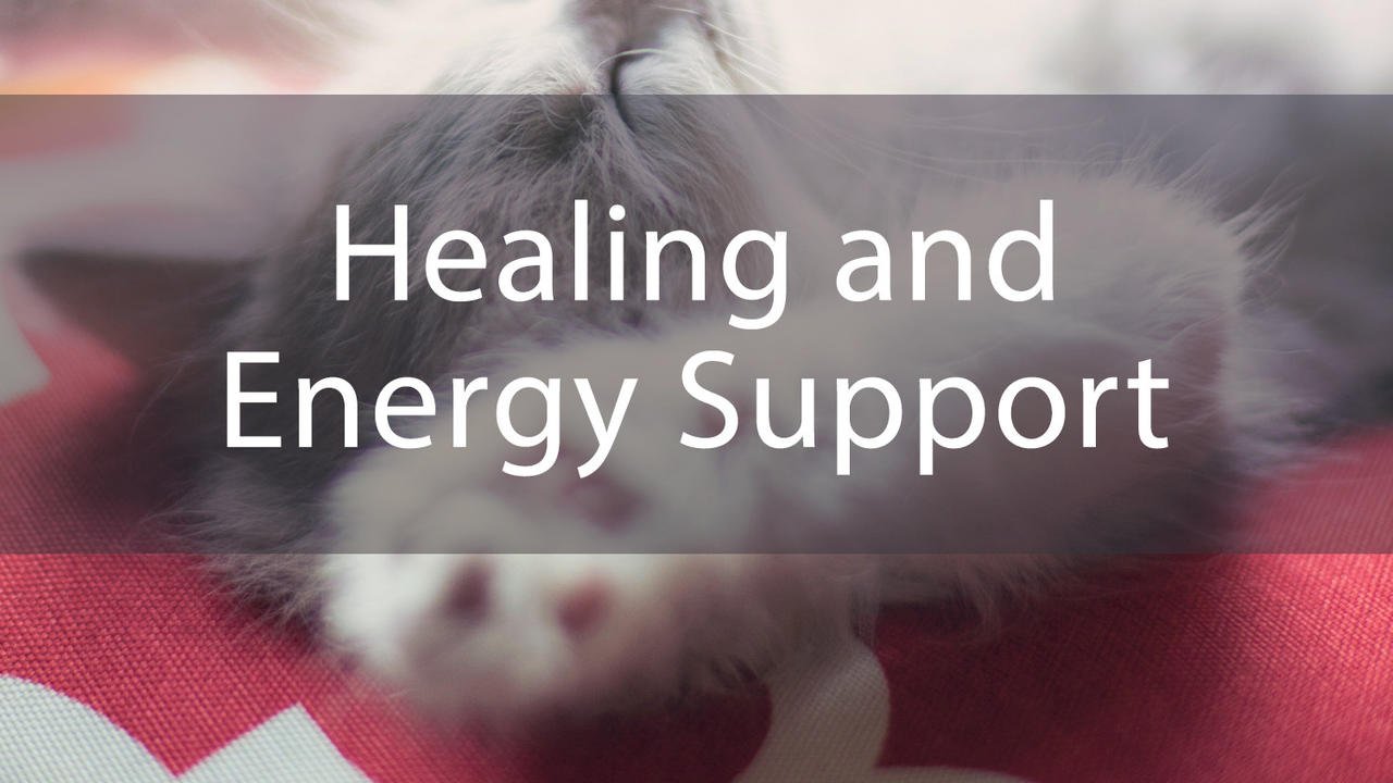 Ktz6a9vsop9yud6wlawg healing and energy support bundle