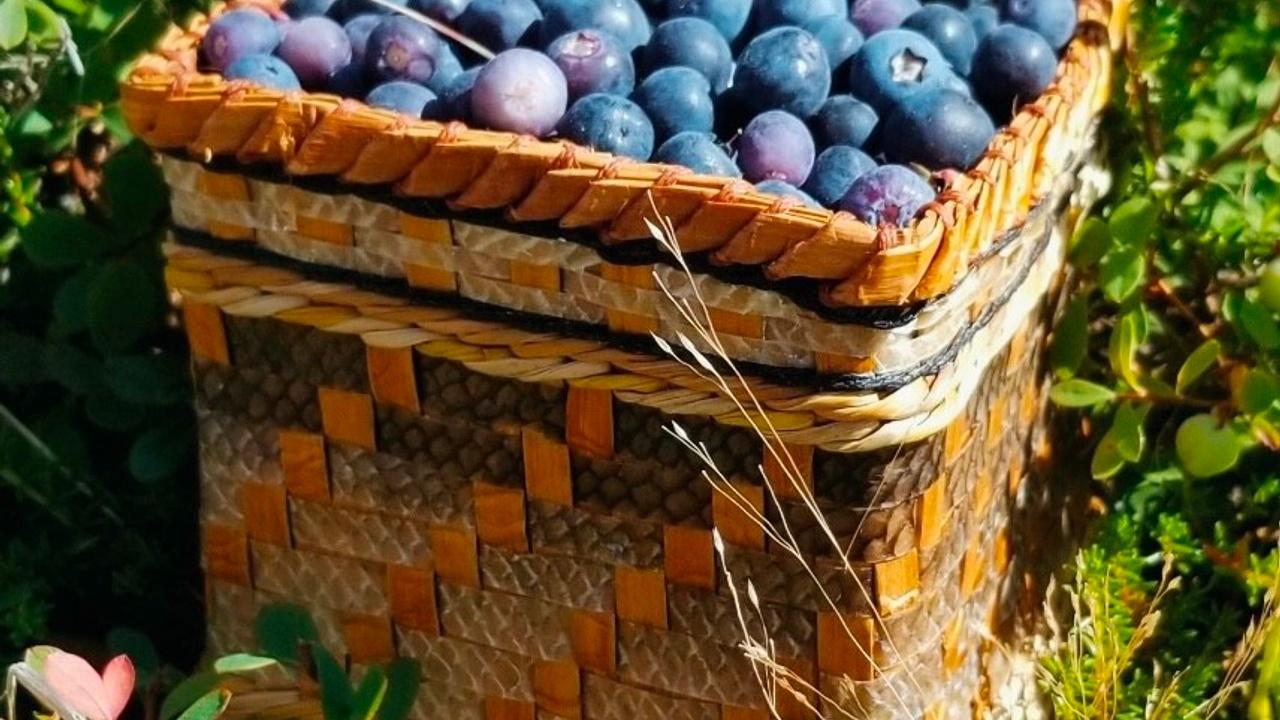 Jv9zwtitn2cotwfnp26h cedar and salmon basket blueberries
