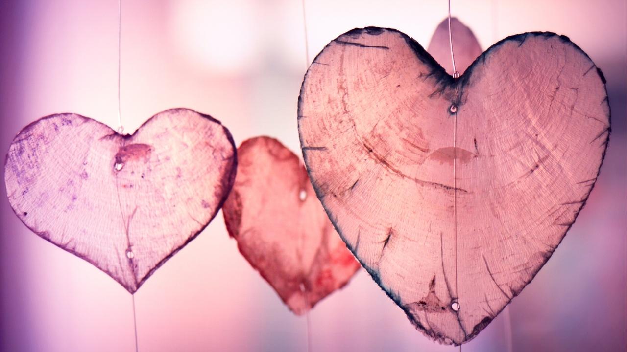 84d4nzjtqqir3azapem1 pink bark hearts