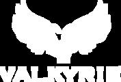 2nfovwmyt0sridemis5b valkyrie logo