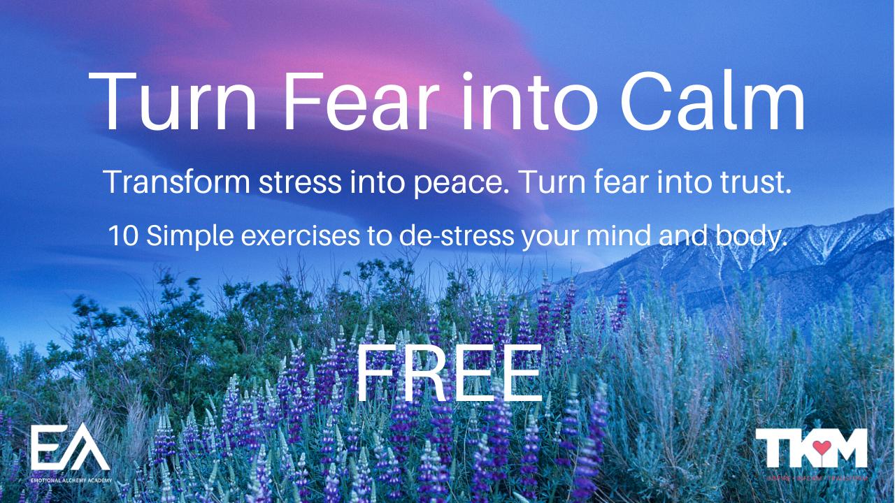 K0orwft3rus08syyntcy turn fear into calm 2