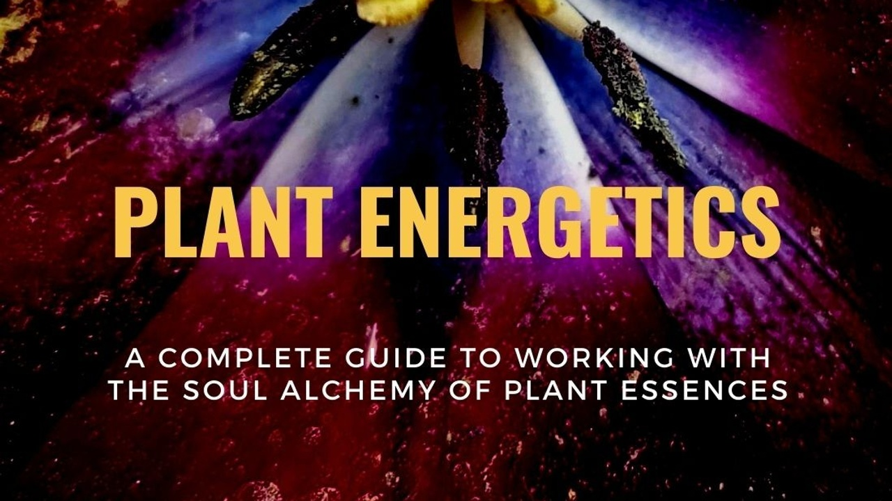 3nbai8hqheg8dx8mcvxw copy of plant essences1