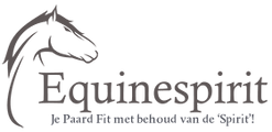 0da9xt1aqwkqwujkqlil logo equinespirit test frank versie met scherpe tekst