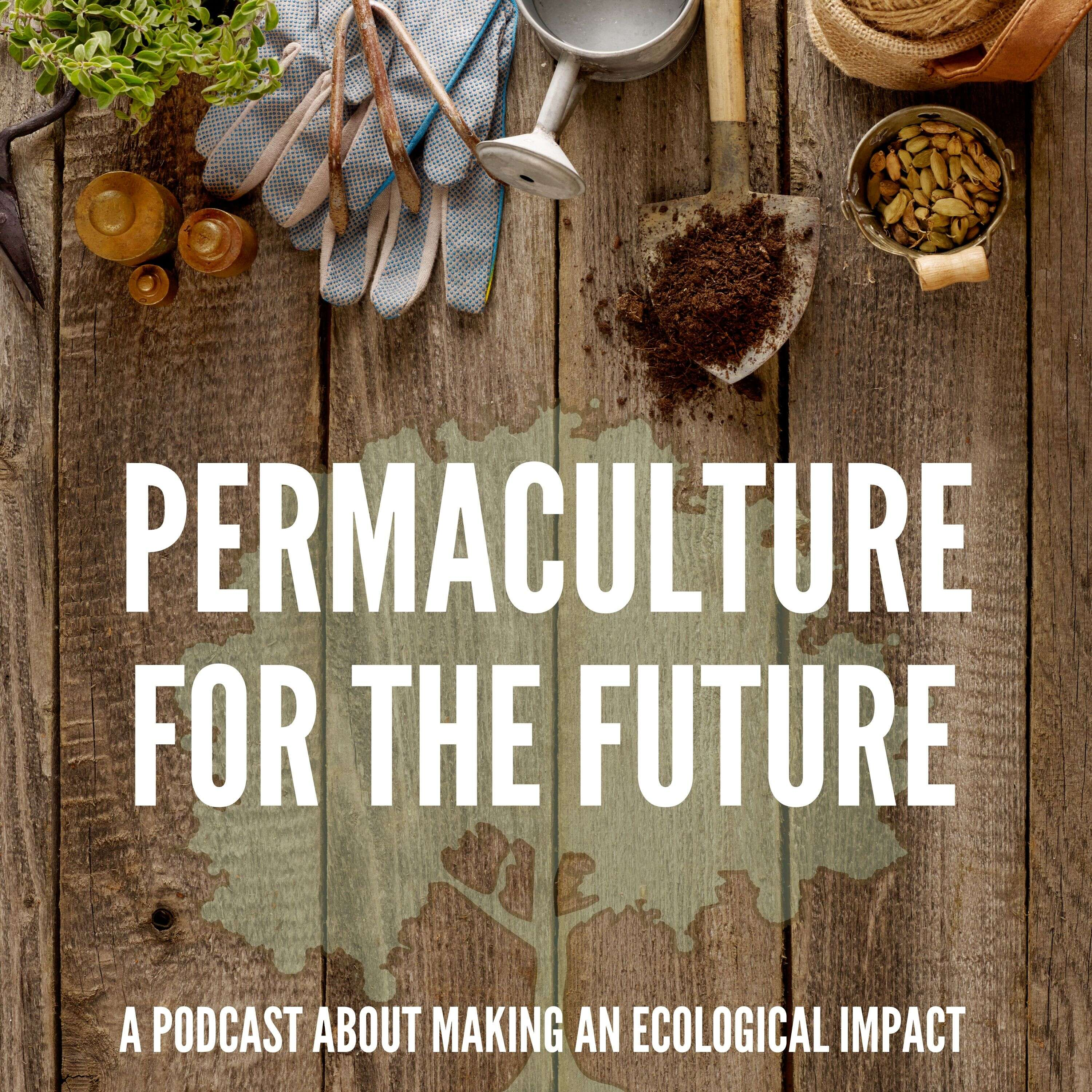 Permaculture for the Future