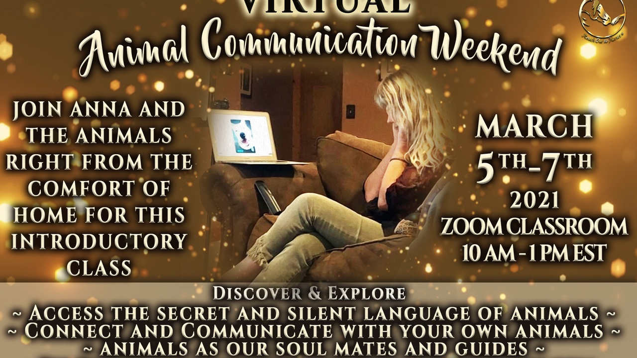 7njv4pkmraaaqrg724n8 ac virtual zoom weekend version 2 with 3 points of discussion