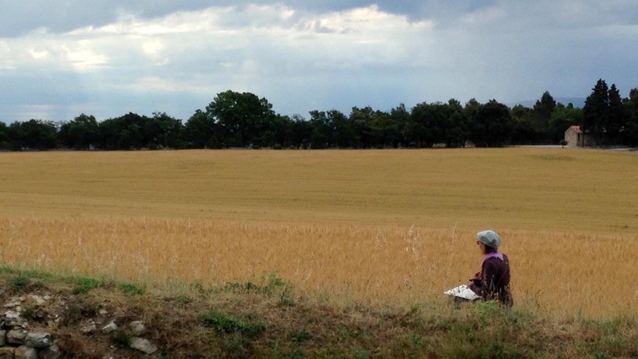 6hjpvqvtxqop1ipk4beg provence book art journal chriscarterartist en plein air wheatfield murs provence france photograph 061814