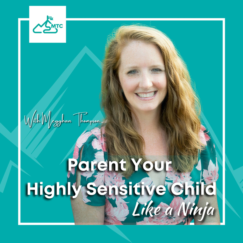 Parent Your Highly Sensitive Child Like A Ninja