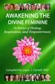 As3edq1ptzuemskrh87g book dfy awakening the divine feminine