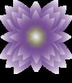 88nnyhndsygfhtv3z7rx wym logo xlarge