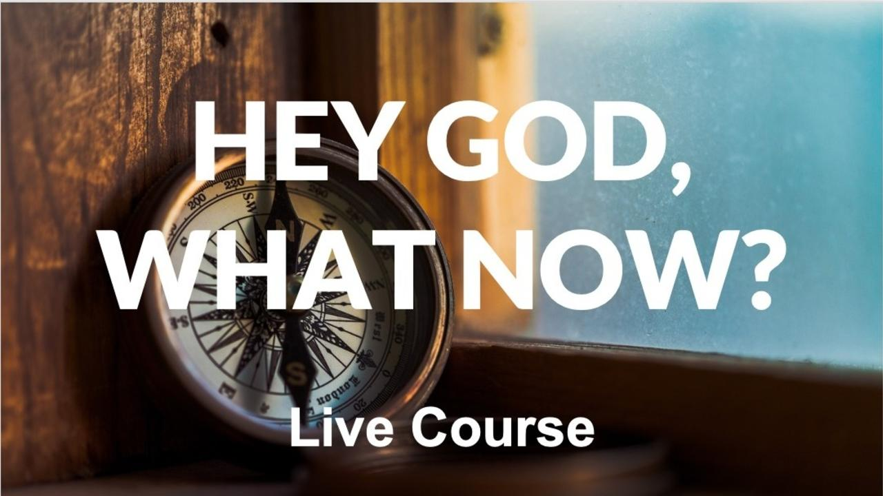 Pfctcclasz6d133h7yhi hey god what now live course