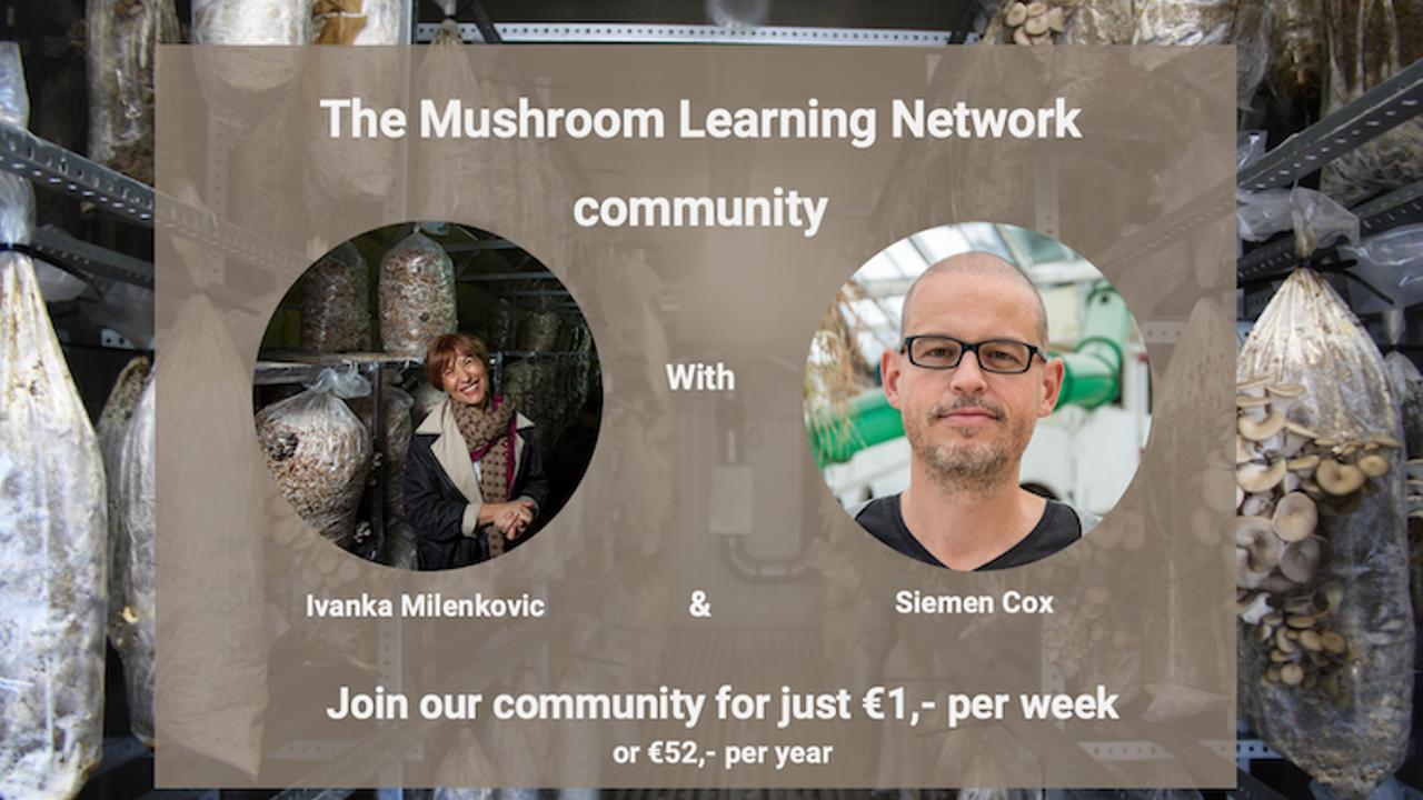 Vrelrc8vt26tqkny4mcp mushroom learning network community offer