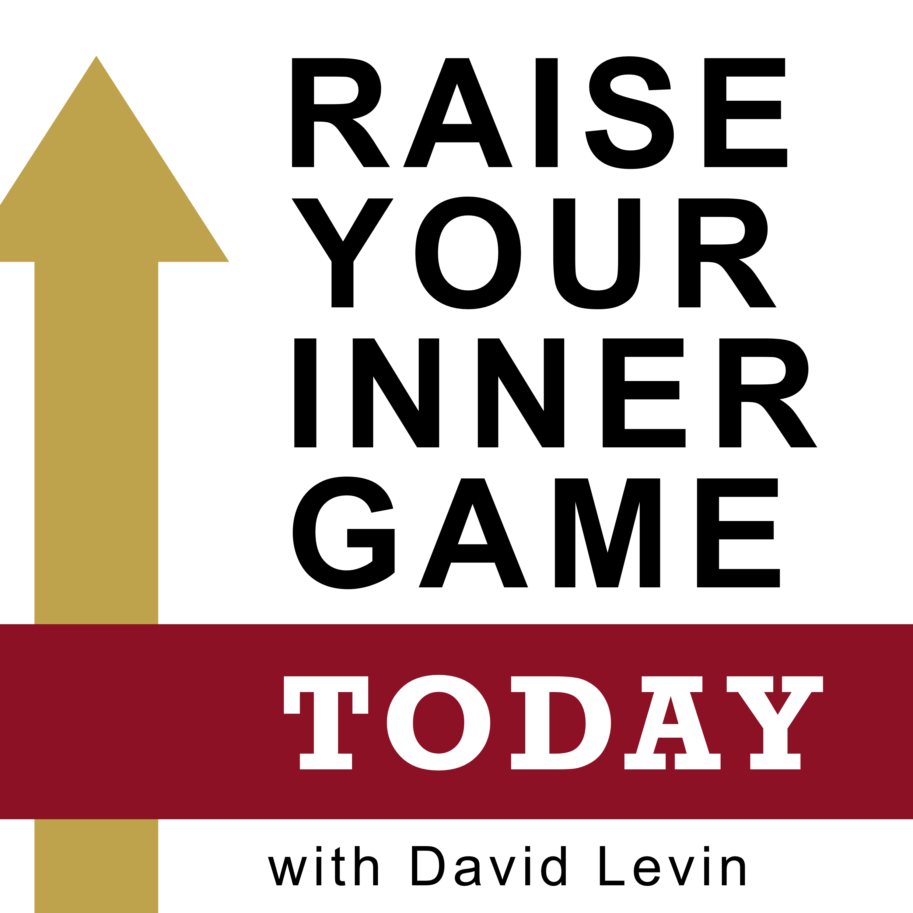 Raise Your Inner Game Today with David Levin
