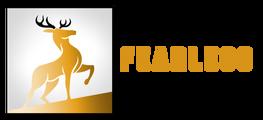 Dtqvornvqpskwnia6rme fearlessclimb logo horizontal final