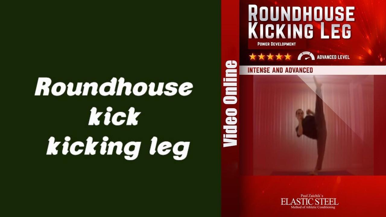 80psnfbs3ybob1kstsyi online roundhouse kick   kicking leg cover