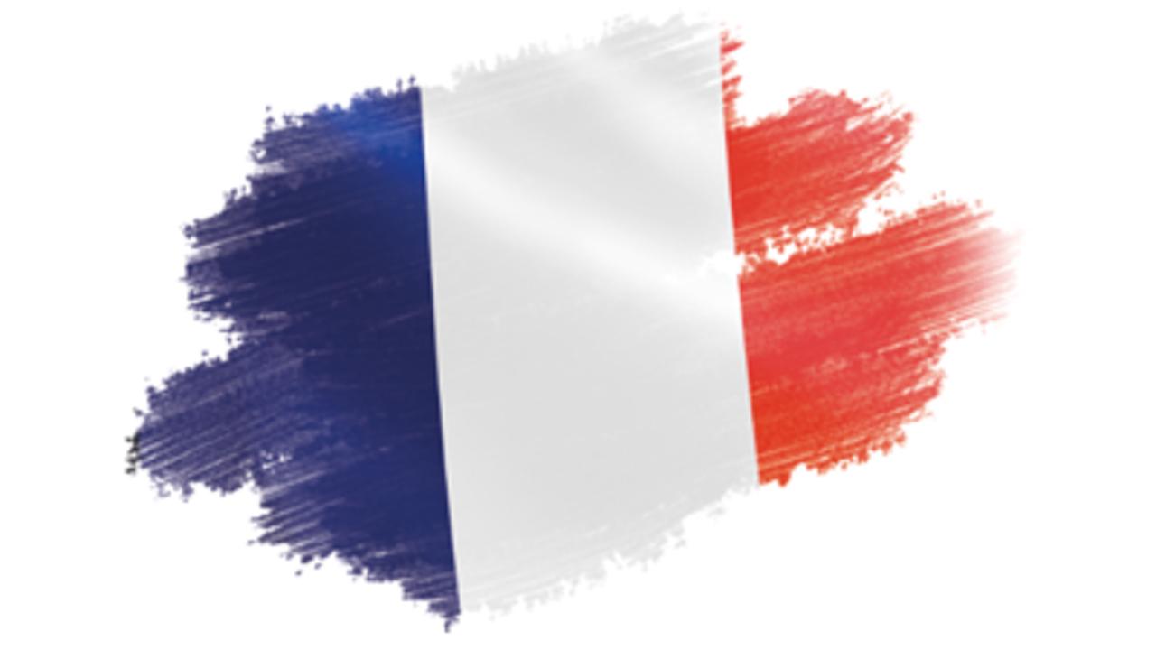 Td2ys7bs0iiynrep9srt french flag icon image 450 255