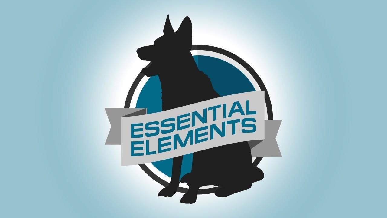 Rrs5c1dfspiqxgv7iufh essential elements   2