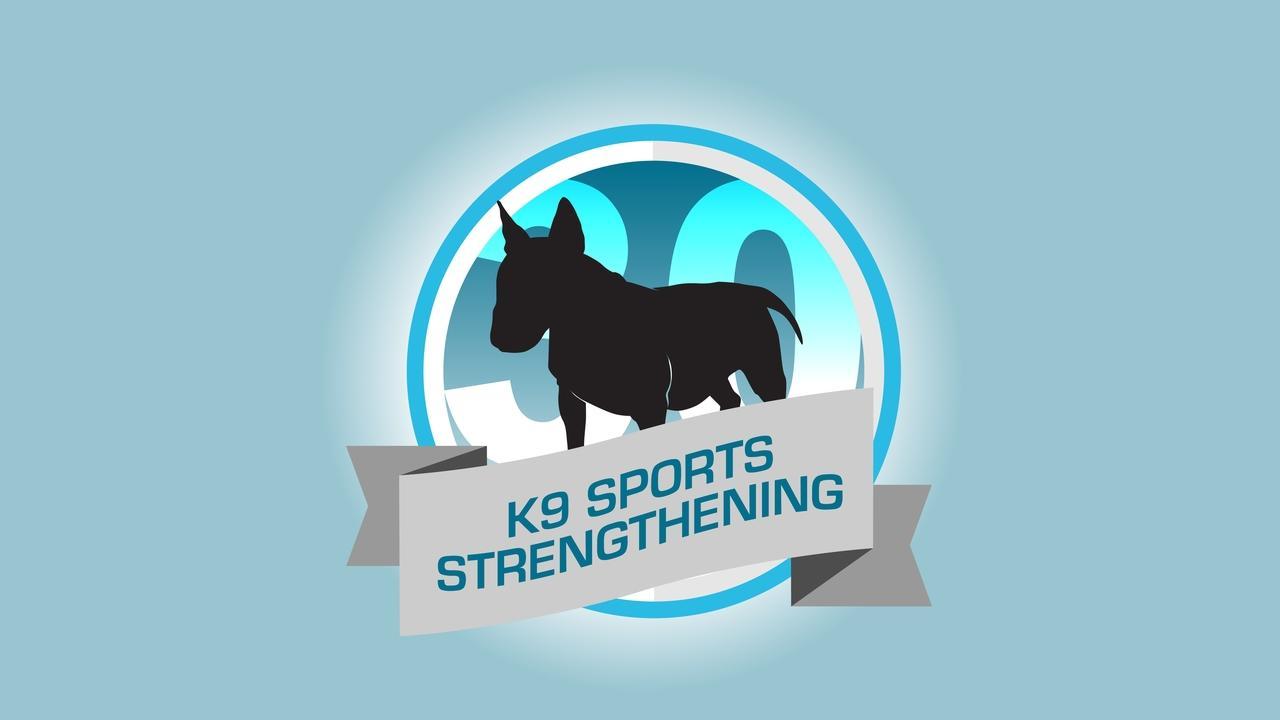 Yhrwmkpfsukn1zamxsj8 graphics   badge k9 sportsblue