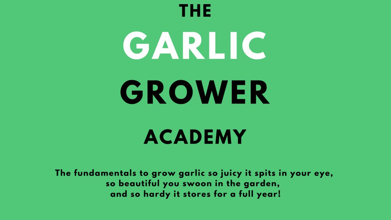 Yuds51nislq5ymata5jx presentation garlic grower academy
