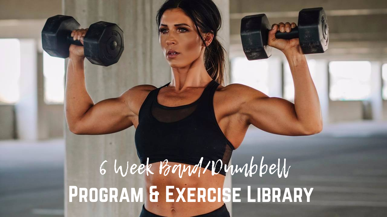 Wyqvuzteqsks2r2nj77f 6 week band dumbbell program exercise library