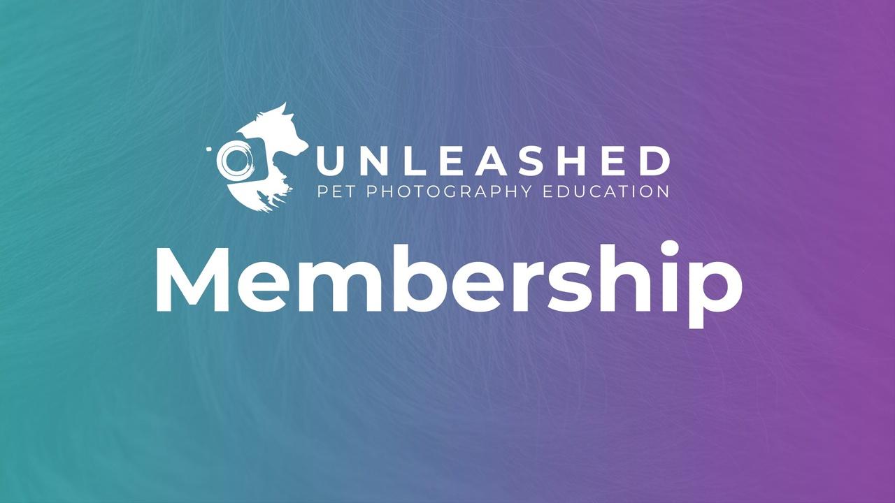 Xxzjuvnhrk6sryyussog unleashed membership