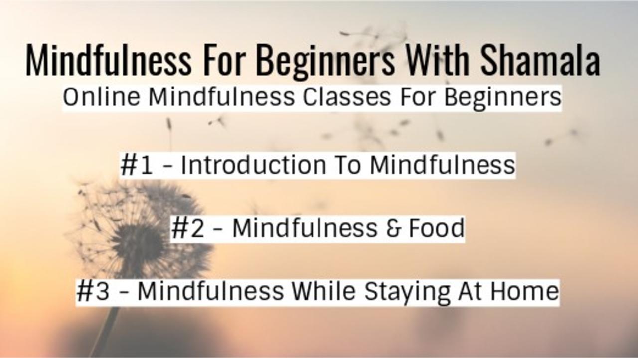 4tuududas8acw5fmr3ch mindfuless