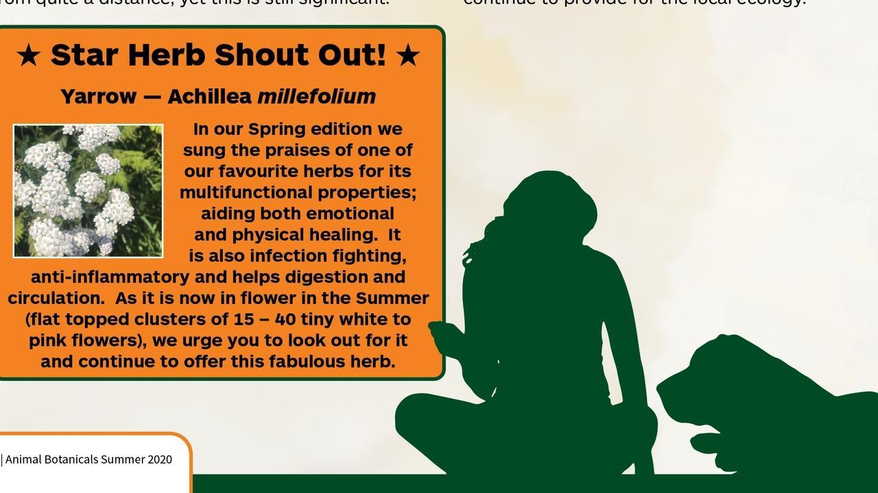 Hjbced1eqzg0mdhlujdz animal botanicals summer brochure issue 23