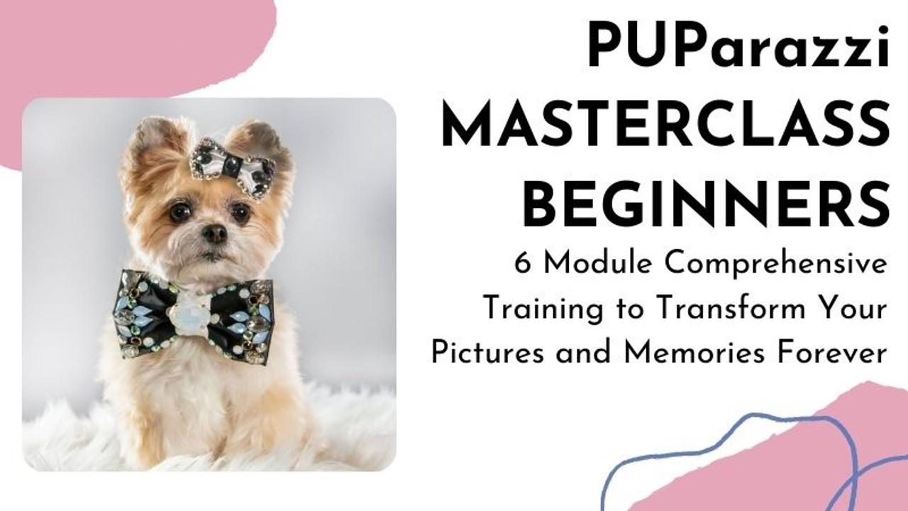 Mewdafcaseu1wpcoq2fh course graphic templates