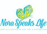Iptlpfbwt9st1t7fbbfy nora logo