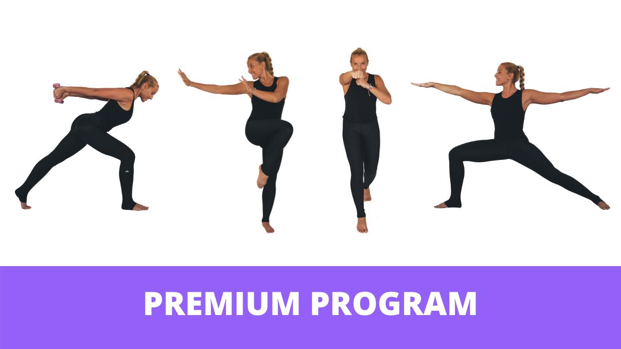 Uy43f46sdespyfqp3k9g premium program