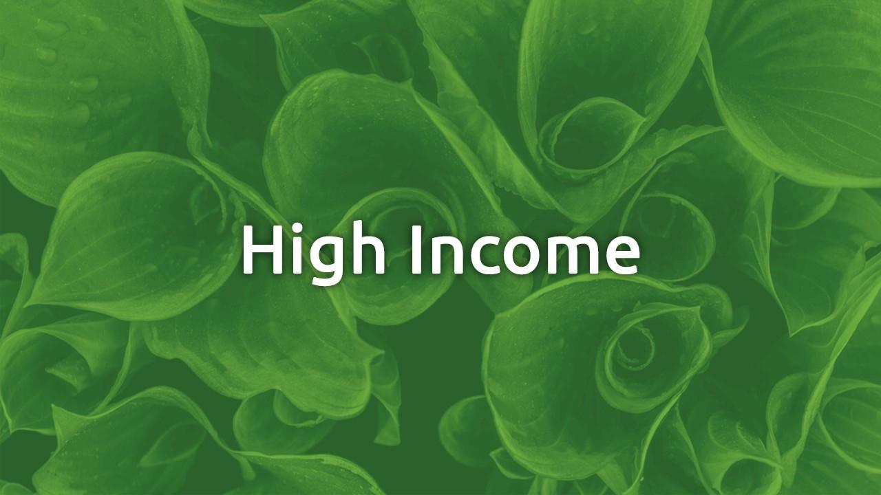 Skwzjo9fsfekbf87ykaq high income