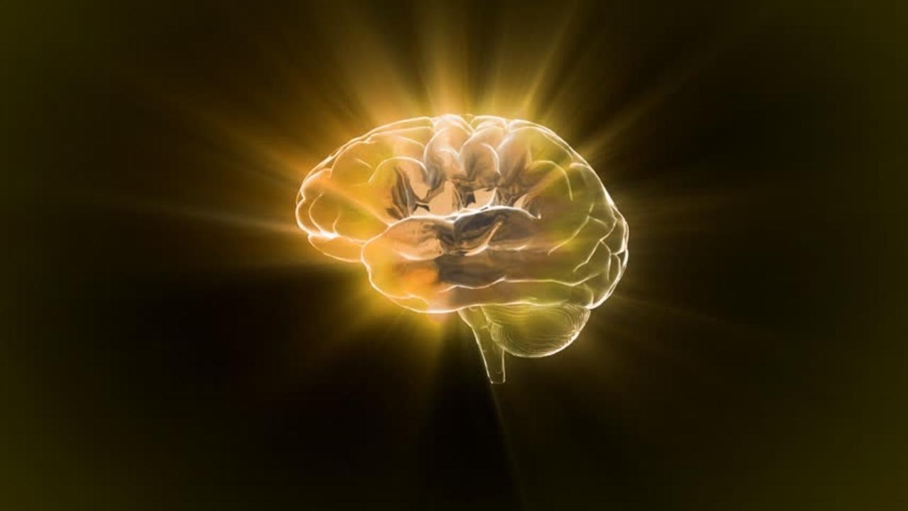 9vjxrgg6sg6viuhamz6q gold brain