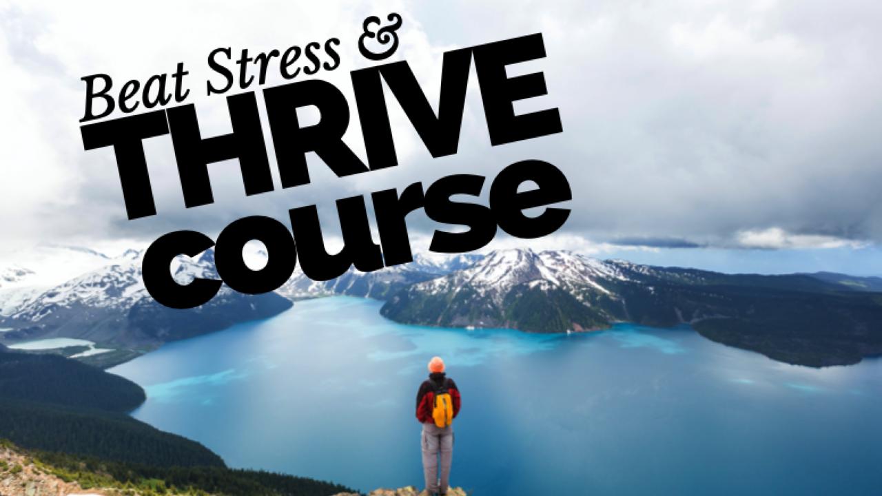 Gzx1mqy6ubvbdxbqzqxz beat stress and thrive course