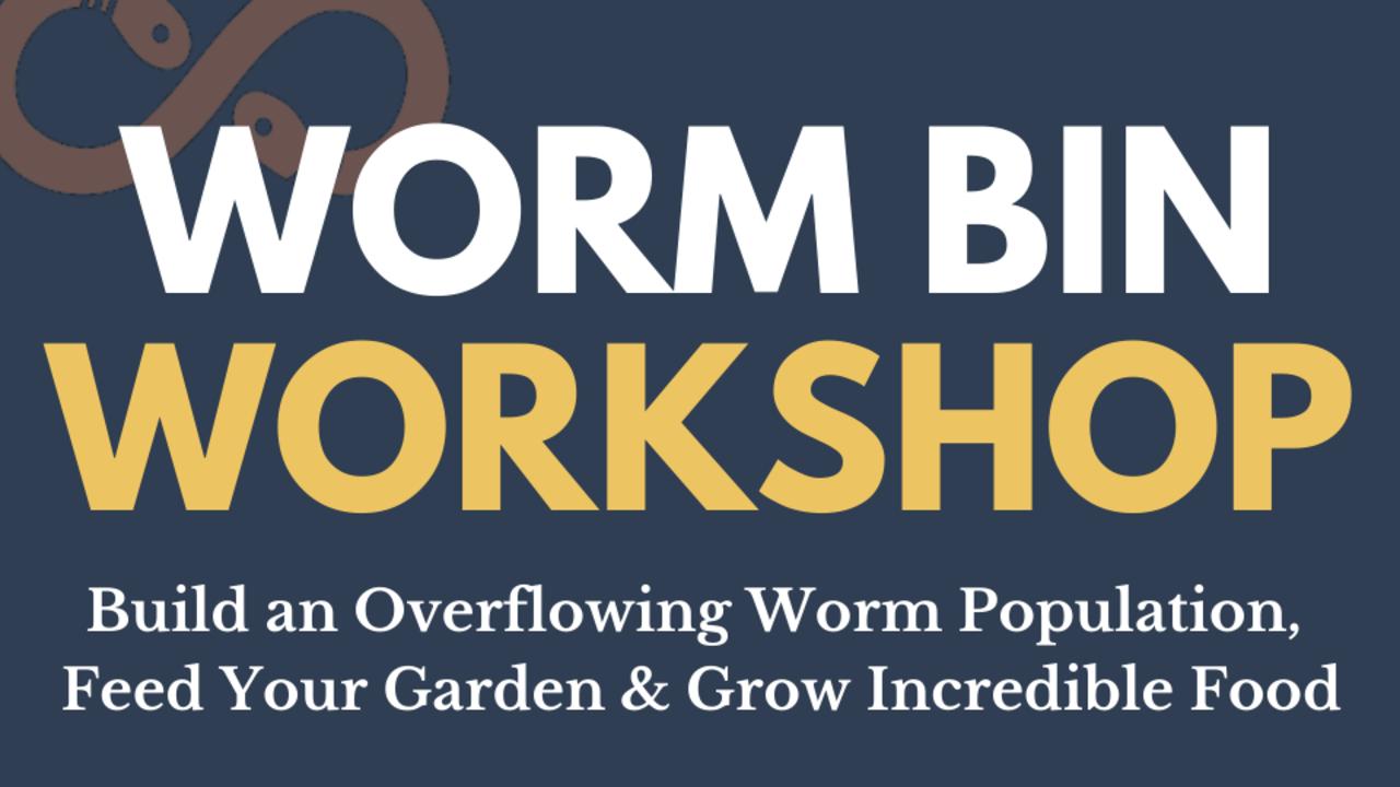 6ykb2aar7gmrdgkwgtoo worm bin workshop thumbnail mockup