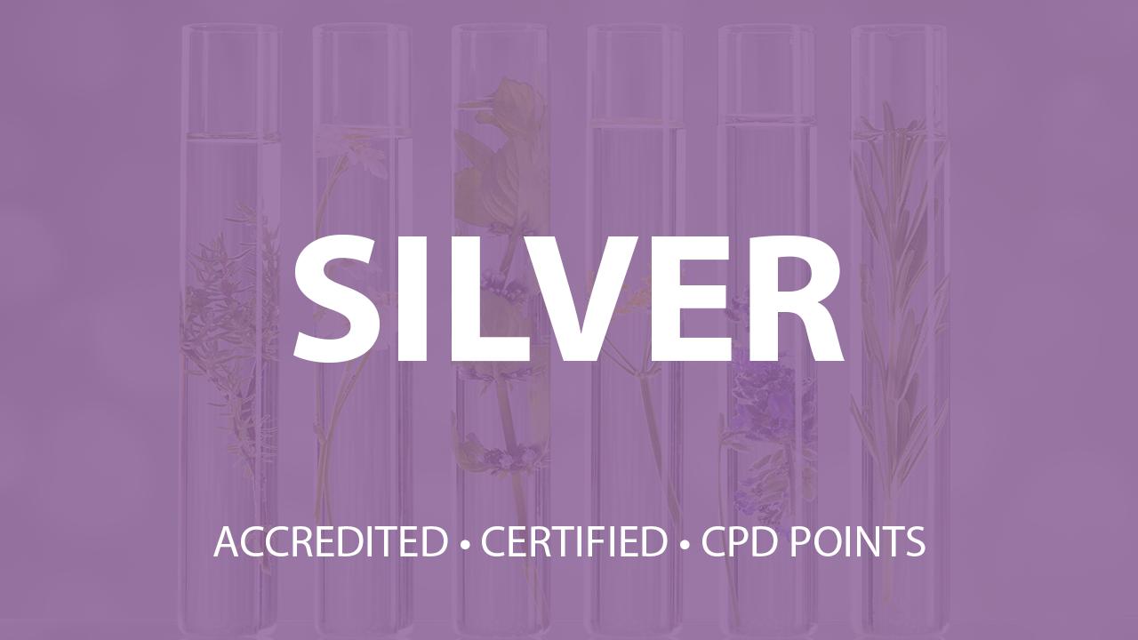 Yljvkudmslo9delpdl3x silver