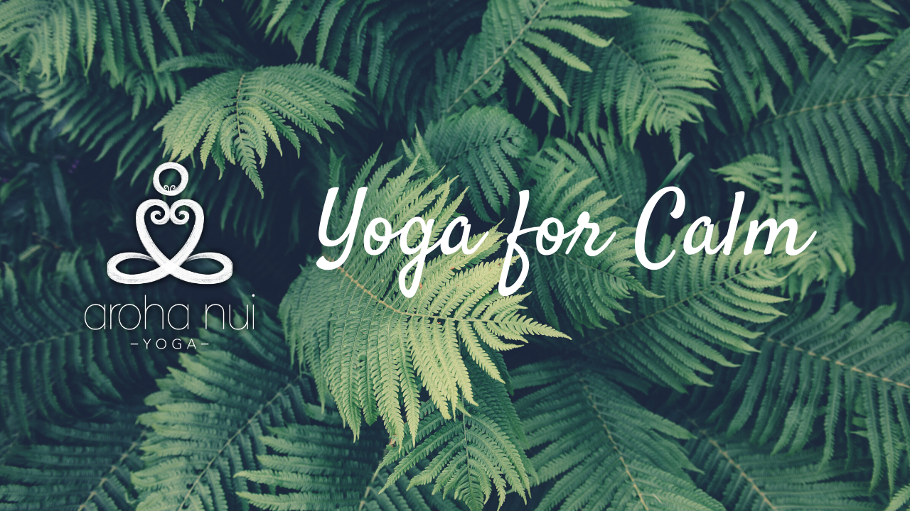 90dkaiaeriqoha3deaa6 yoga for calm