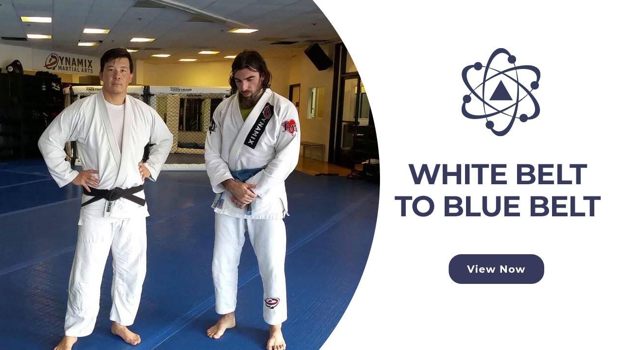 Swaoxoelseo8eo9qslei white belt to blue belt