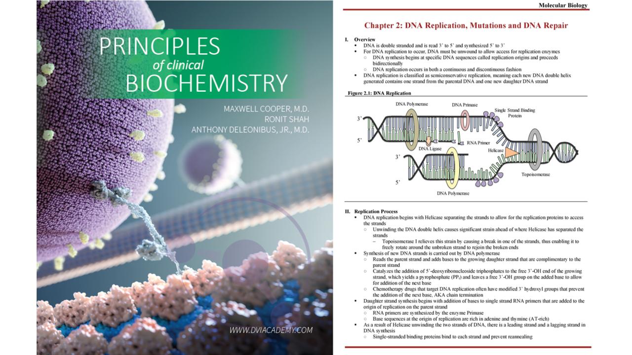 Byqg8rht2yfitqk0zesq biochemistry offer