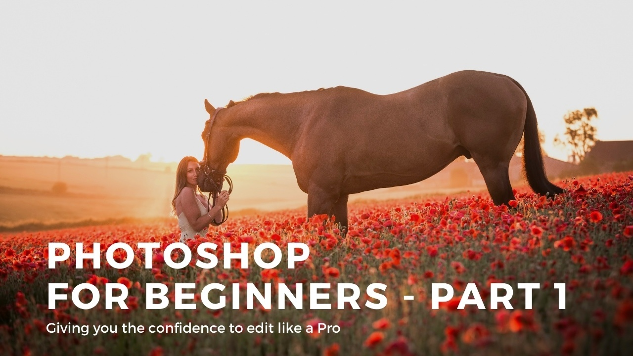 1z235zdmstuiasal6wns photoshop for beginners   part 2