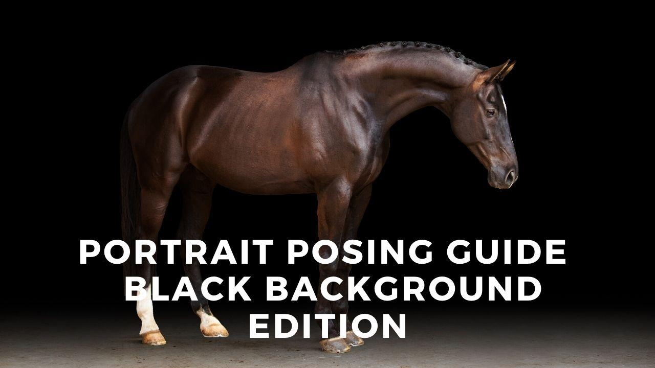 Kedxww6sej1bywhdtwlb front image   bbg posing guide
