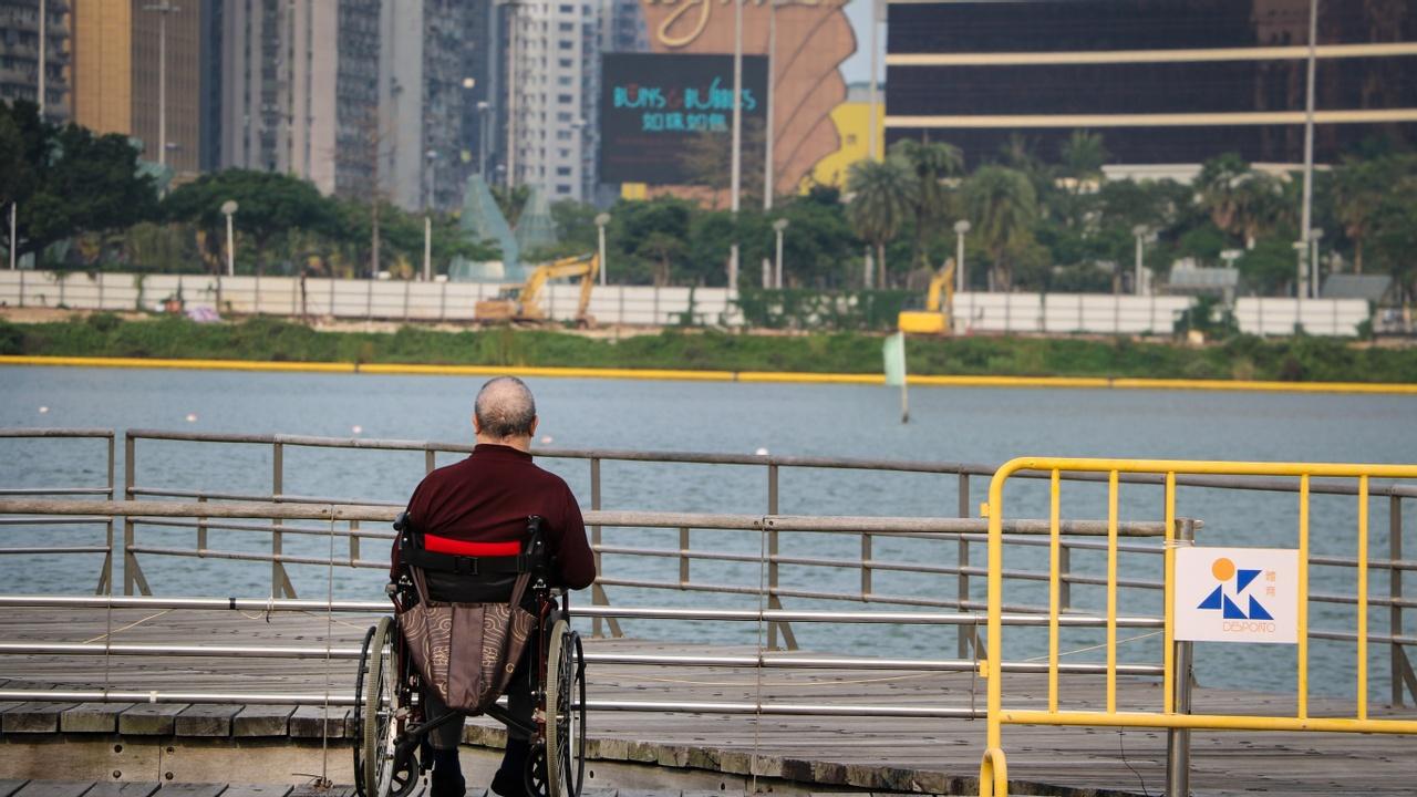 Kzcjomnfraxlibir6n8t csa disability standards banner