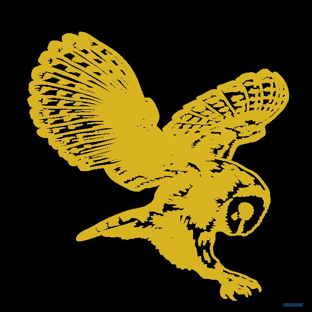 Lmpaae4rlyzvvecihtvk jessica lashawn owl of knowledge tech logo